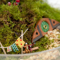 Make Your Own Hobbiton Miniature Garden