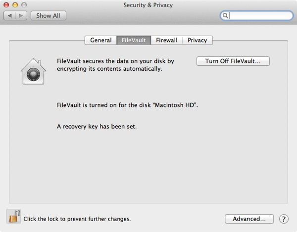 You can disable FileVault 2 at any time