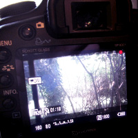 Getting Started with DSLR Video: Part One