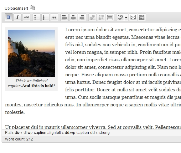 Caption look in editor