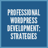 Professional WordPress Development: Strategies